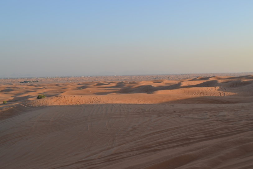 The Sharjah Desert